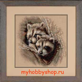 Two Racoon Cubs Два малыша-енота
