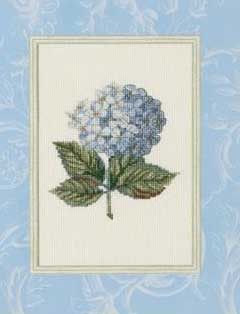 Hortensia Windsor